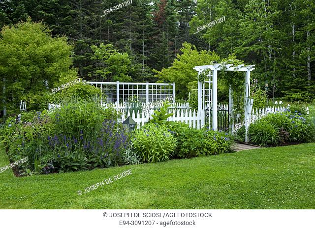 A fenced vegetable garden with borders of perennial plants in beds in the foreground, in early summer, in Nova Scotia, Canada
