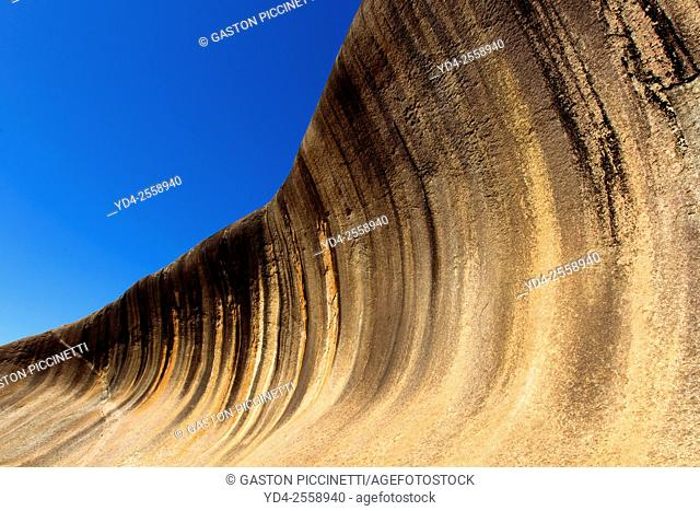 "Wave Rock is a natural rock formation that is shaped like a tall breaking ocean wave. The """"wave"""" is about 14 m (46 ft) high and around 110 m (360 ft) long"