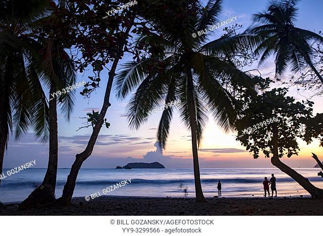 Sunset through the palm trees on Espadilla Norte Beach, Manuel Antonio, Quepos, Costa Rica