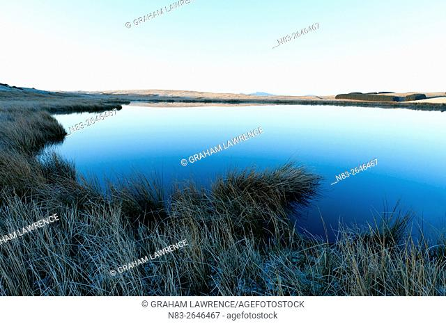 View over a small lake on the Mynydd Epynt moorlands, Powys, Wales, UK