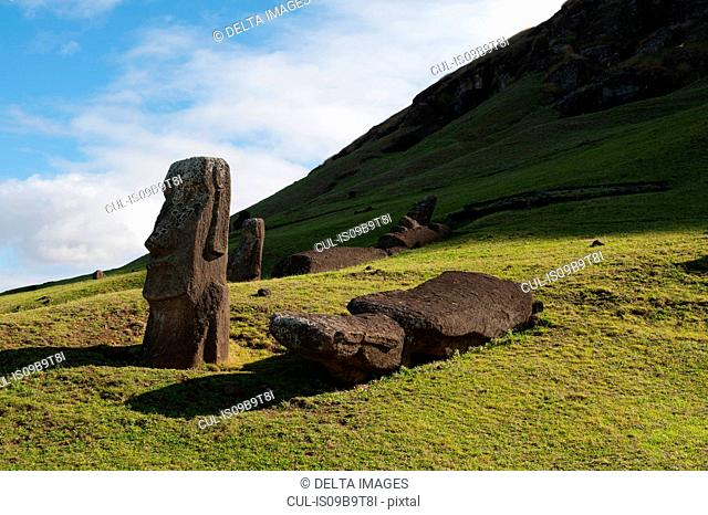 Rano Raraku moai statues, standing and fallen on Easter Island