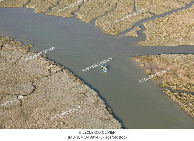 France, Somme, Baie de Somme, channels in salt marshes (aerial view)