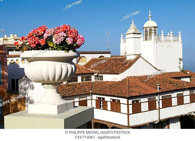 Spain. Canary islands. Tenerife. La Orotava