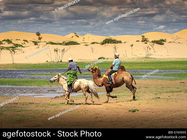 A horse rider pulling a camel rider, back is the sand dunes, Bulgan province, Mongolia, Asia