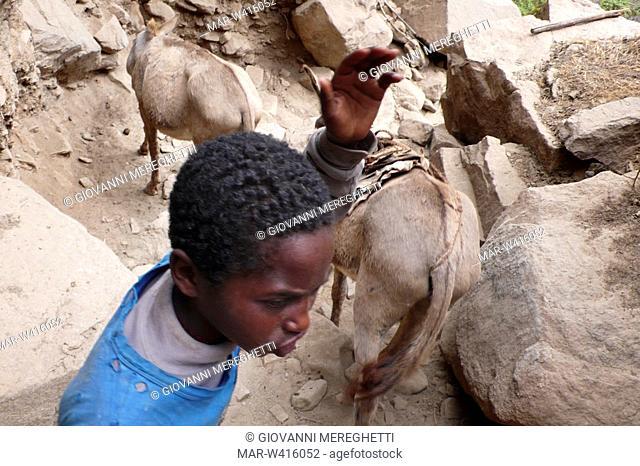 trasporto del sale dal cratere di el sod, etiopia, africa