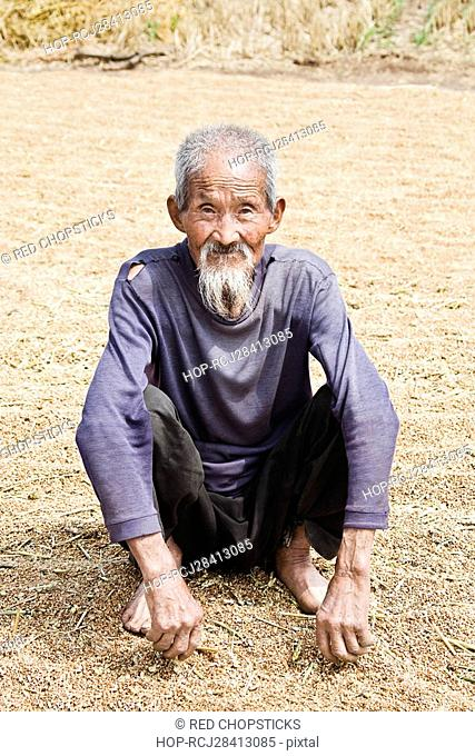 Portrait of a senior man crouching over rice grains, Zhigou, Shandong Province, China