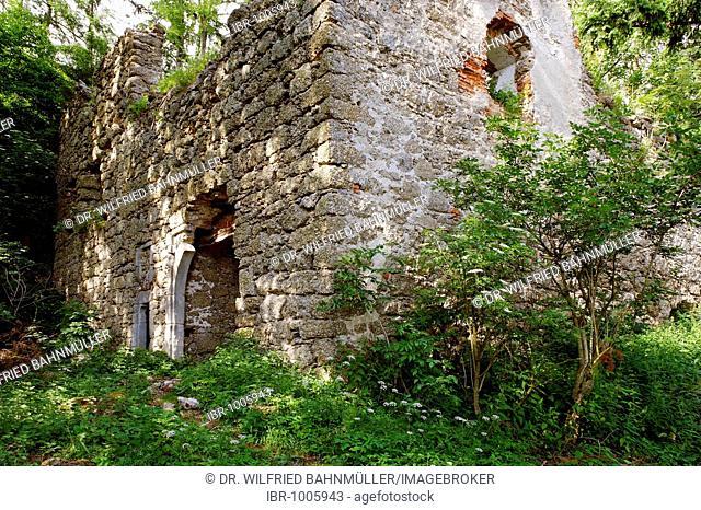 Klingenberg Castle ruins near St. Thomas am Blasenstein, Muehlviertel, Upper Austria, Europe