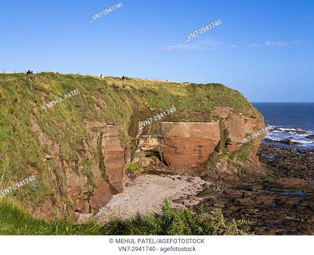 People walking along the path of Seaton Cliffs near Arbroath on the east coast of Scotland. Seaton Cliffs coastal walks provides views of steep red sandstone...