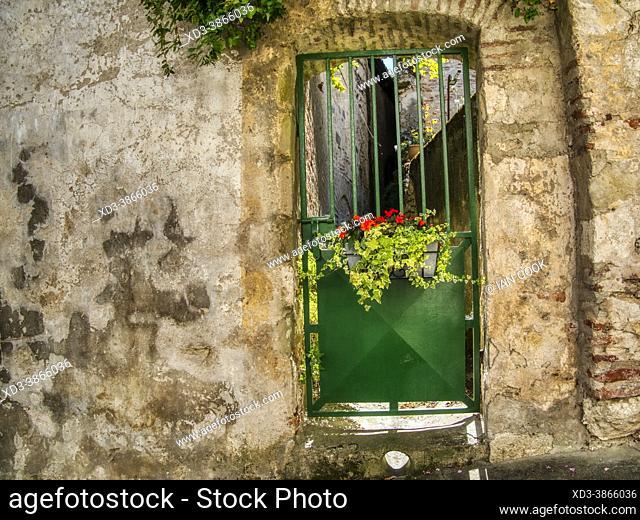 green metal door with flowers, Penne dÕAgenais, Lot-et-Garonne Department, Nouvelle Aquitaine, France
