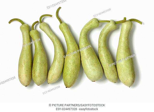 Row of fresh Moroccan bottle gourds on white background