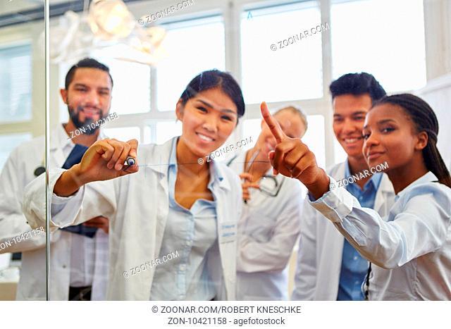 Multikulturelle Gruppe Studenten in einer Lerngruppe im Medizinstudium