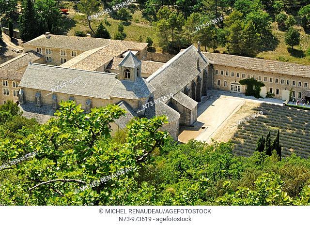 France, Vaucluse, Abbaye de Sénanque et lavande, Enserrée dans le creux de son vallon, l'Abbaye Notre-Dame de Sénanque demeure comme un des plus purs témoins de...