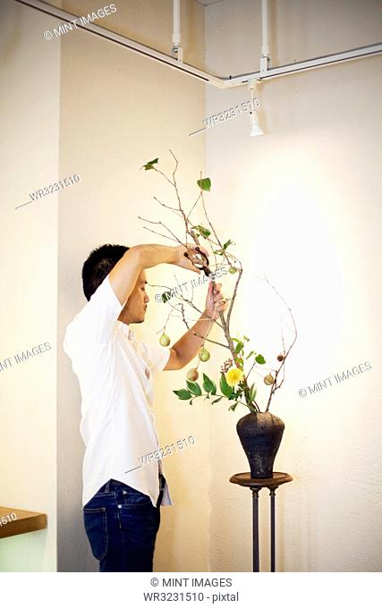 Japanese man standing in flower gallery, working on Ikebana arrangement, using secateurs