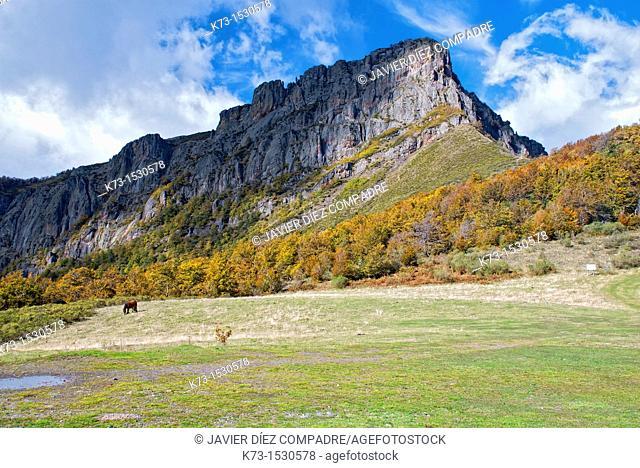 Pico Camborisco. Picos de Europa National Park. Leon Province. Castilla y Leon. Spain
