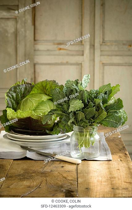 Cabbage Variety on Table