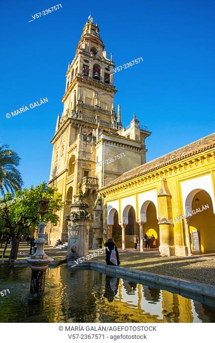 Tower and Naranjos courtyard. Mosque Cathedral, Cordoba, Spain