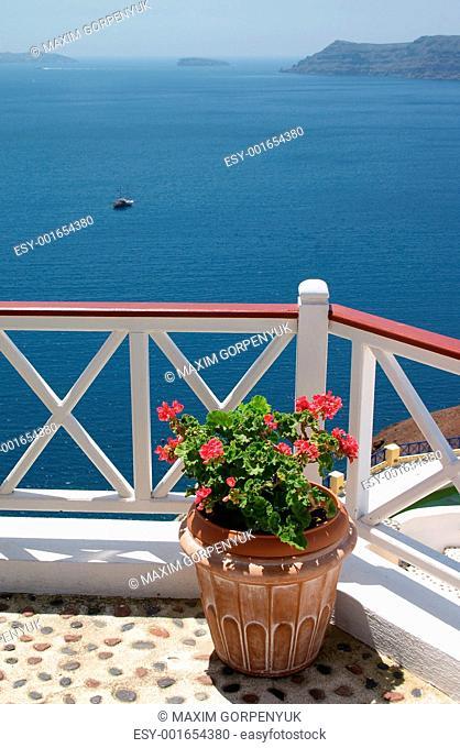 flowerpot on balcony