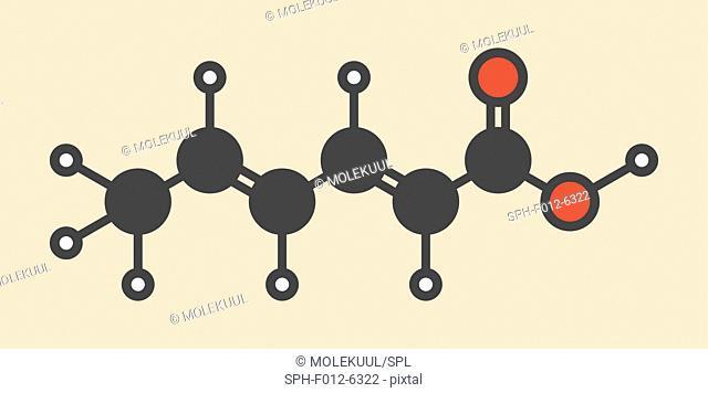 Sorbic acid food preservative molecule