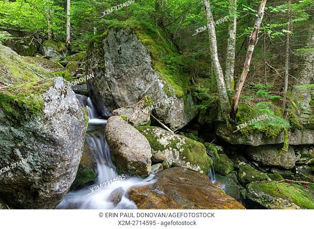 The top portion of Cascade #5 on Cold Brook in Randolph, New Hampshire during the summer months. The 1908 map of the Northern Peaks of the White Mountains by...