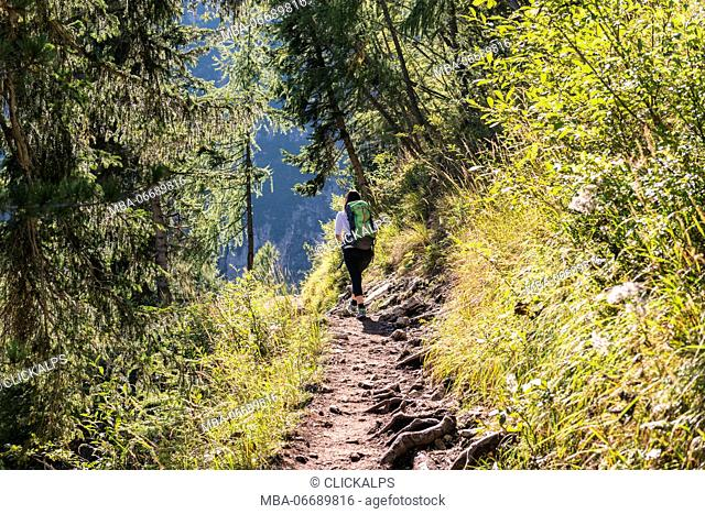 Europe, Italy, Veneto, Belluno. Woman Hiker along the path of the Alta Via nr. 3 in the Sorapis group, Dolomites