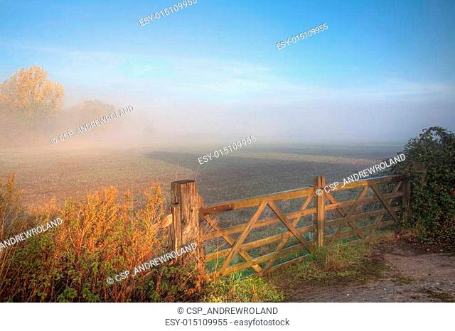 Countryside background with gate