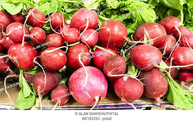 Organic Radishes on market stallin Spain