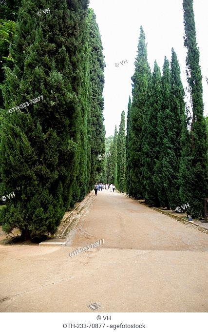 Generalife gardens, Alhambra, Granada, Andalucia, Spain, Europe