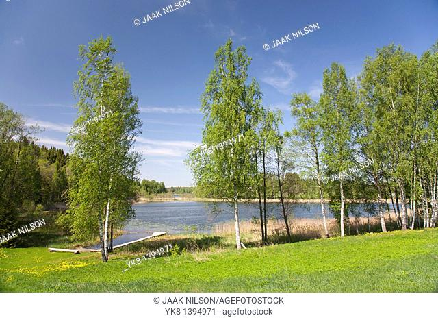 Spring landscape with trees by lake