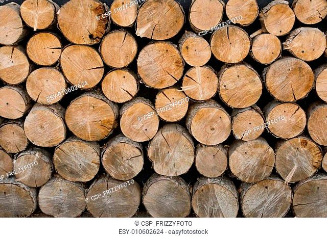 Wall of felled trees