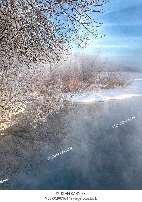 Hoarfrost on trees and weeds around Lake Harriet in Minneapolis, Minnesota USA