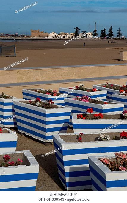 IN THE BACKGROUND, THE PORT OF ESSAOUIRA AND CUSTOMS, THE BLUE COLORS TYPICAL OF ESSAOUIRA ON THE FLOWER POTS ON BOULEVARD MOHAMED V, ESSAOUIRA, MOGADOR