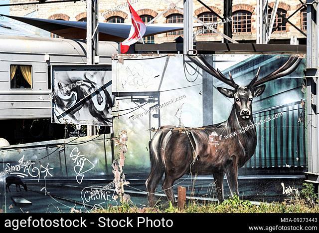 Estonia, Tallinn, scene district, street art, deer