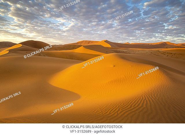Sossusvlei sand dunes at sunrise, Namib Naukluft national park, Namibia, Africa