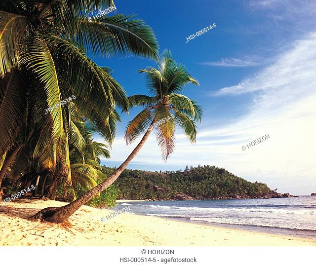 Travel, Seychelles, Mahe, Tropical beach