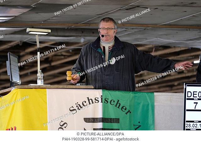 28 March 2019, Saxony, Kölsa: Auctioneer Hanno Franke runs a ram auction. Over 190 sheep from breeders from the federal states of Saxony, Saxony-Anhalt