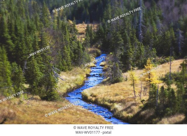 River runs through spruce, pine and larch forest Cape Breton Highlands National Park