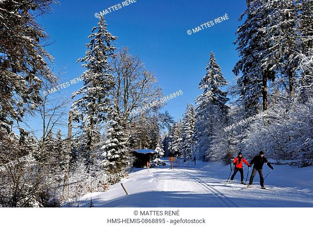 France, Haut Rhin, Hautes Vosges, The ski resort of the Lac Blanc, Col du Calvaire, slopes of cross country skiing