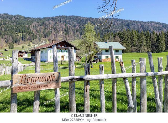 Spring meadow, farmhouse, Gerold, Upper Bavaria, Bavaria, Germany