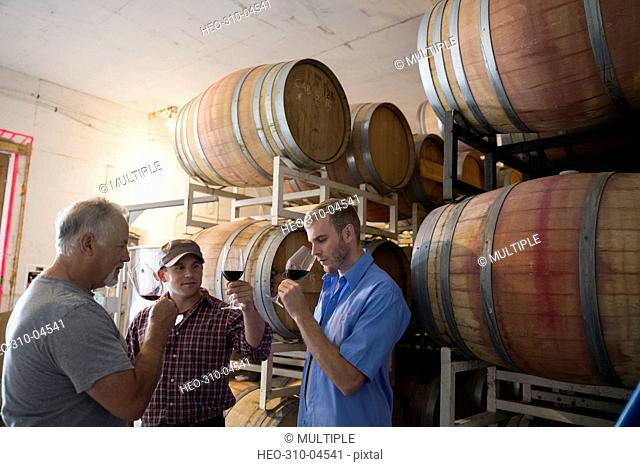 Male vintners tasting and checking red wine in winery barrel room