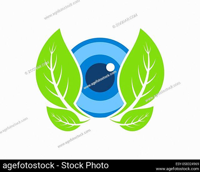 Healthy eyes with green leaf