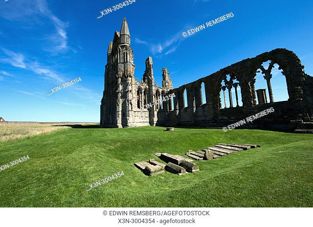 Ruins of Whitby Abbey stand alone in grassy field, Whitby, Yorkshire, UK
