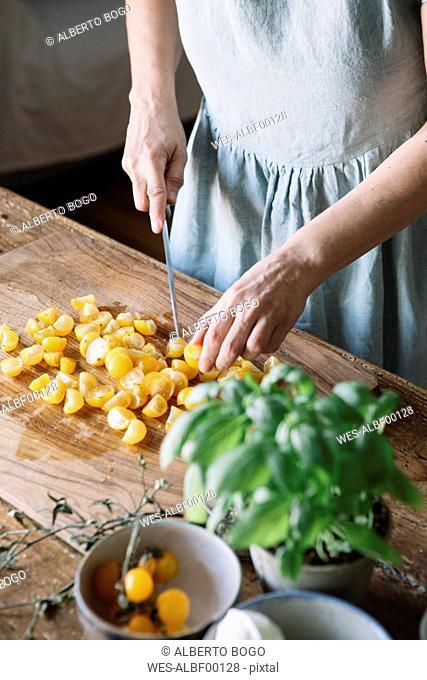 Close-up of woman slicing fresh tomatoes