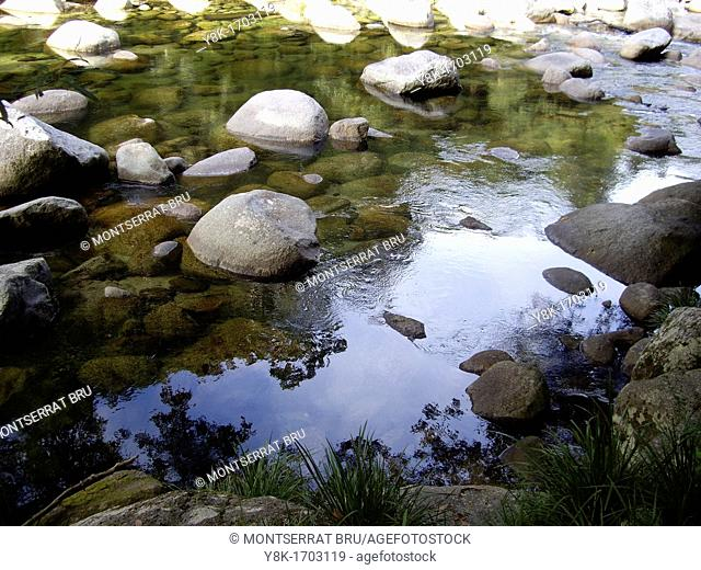 Mossman river transparent water with sky reflection and rocks in Queensland, Australia