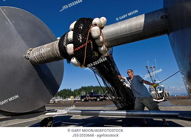 Commercial fisherman rolling trawl net onto large spool after making repars on the net at work area for commercial fishing boats, Anacortes, Washington USA