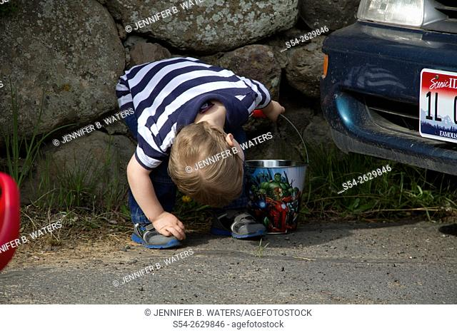 A young boy looking for Easter eggs during a hunt