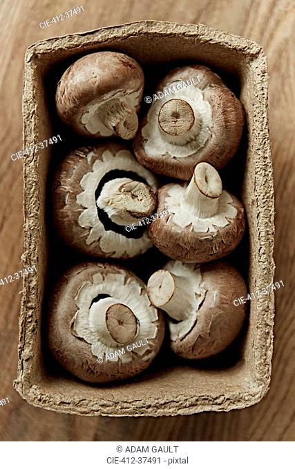 Still life fresh, organic, healthy, six brown mushrooms in container