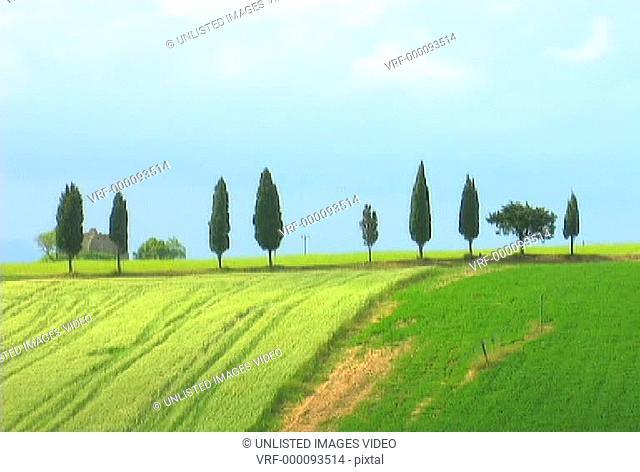 Italian Landscape 2