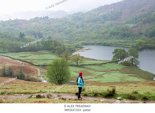 A woman looks out over Rydal Water near Grasmere, Lake District National Park, Cumbria, England, United Kingdom, Europe