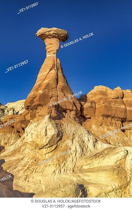 Signature toadstool hoodoo rises above the landscape in Paria Rimrocks Toadstool Hoodoos, Grand Staircase-Escalante National Monument Utah, USA