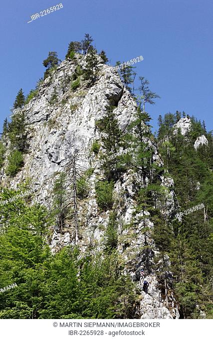Fixed rope route near Johnsbach, Gesaeuse National Park, Ennstal Alps, Upper Styria, Styria, Austria, Europe, PublicGround
